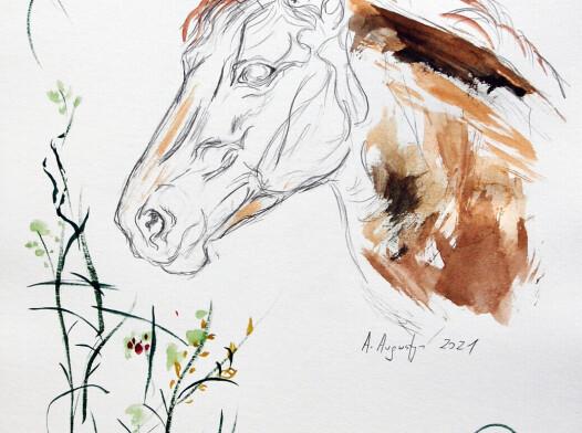 Końska głowa